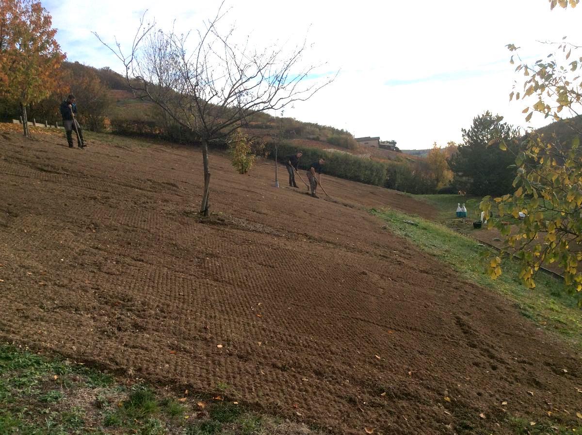 Réalisation d'un gazon sur terrain en pente à Beaujeu